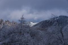 雲取山山頂に建つ避難小屋@ヘリポート付近