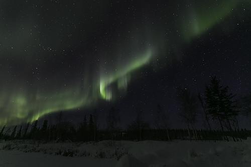 Aurora Feb 8, 2016-9225