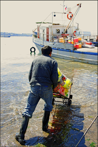 chile man water boat ship candid streetphotography delivery quellon islagrandedechilon