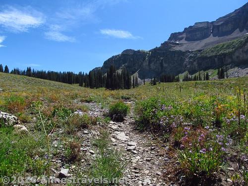 The trail further along the shelf going toward Alaska Basin Overlook, Jedediah Smith Wilderness and Grand Teton National Park, Wyoming
