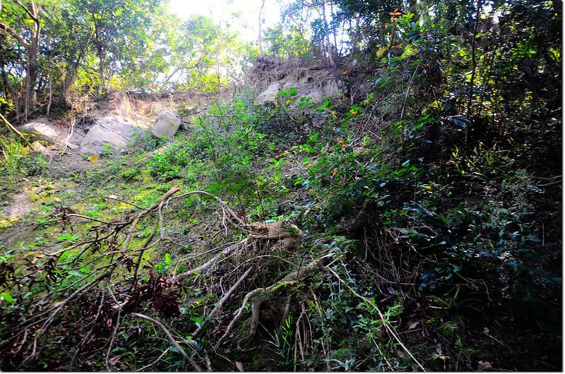 金瓜寮山山頂坍方處