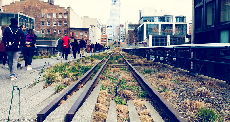 The High Line NYC