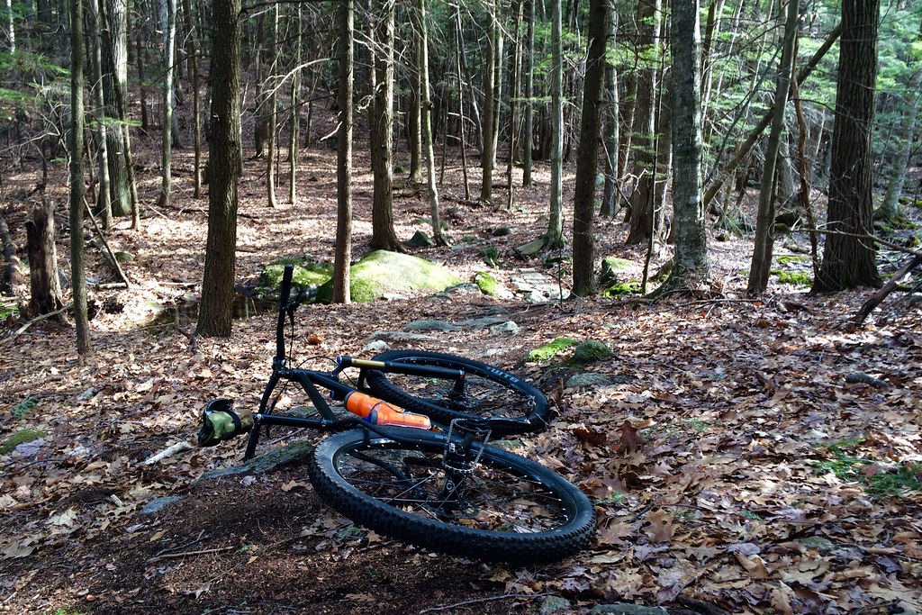Out in those NH Woods