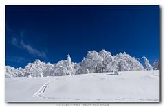 Regards sur les Vosges