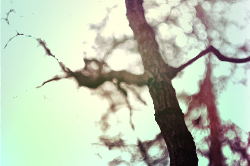 blur-dreamy-texture-texturepalace-41