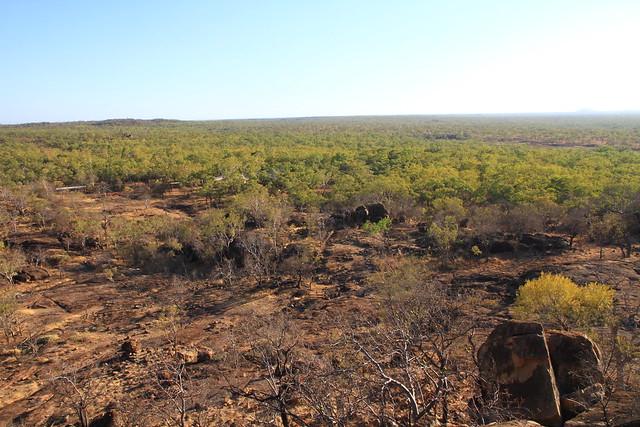 澳洲昆士蘭Undara Experience-俯瞰稀樹草原景觀-20141117-賴鵬智攝