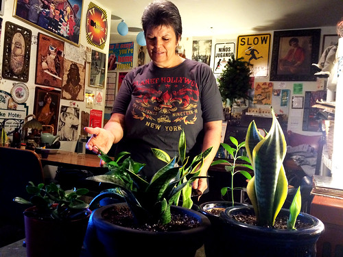 Transplanting Plants with Mom (January 22 2015)
