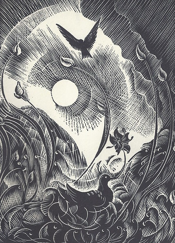 Illustration from Out of Bedlam by Elizabeth Rivers. Image shows a diving nesting as another dove flies overhead in the sun.