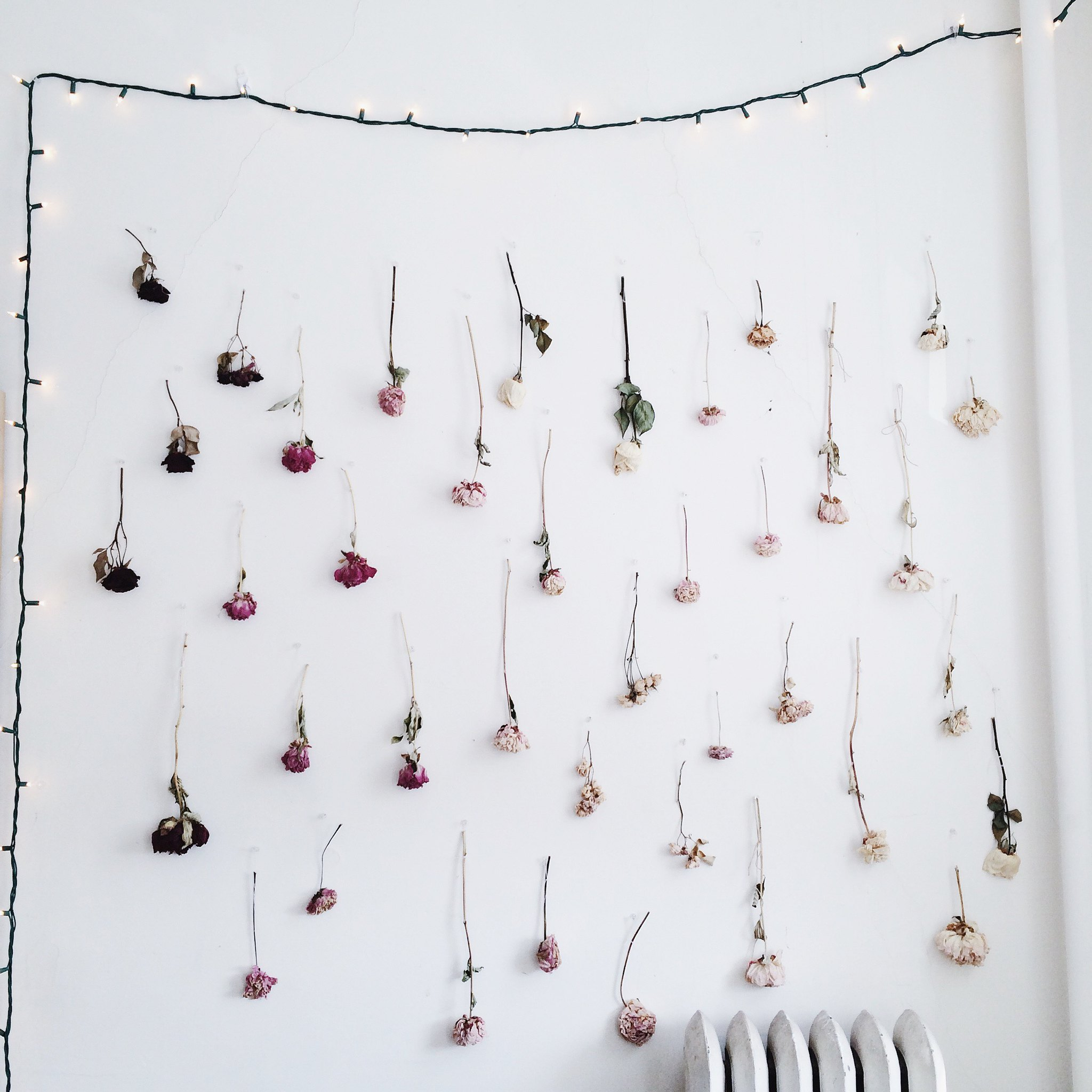 DIY Ombre Dried Flower Wall on juliettelaura.blogspot.com