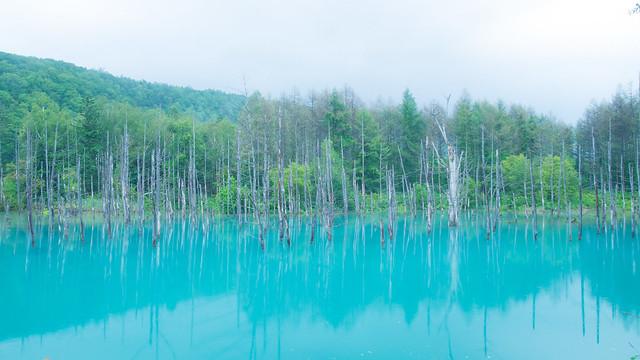Hokkaido day6 15 Aoi-ike