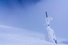 直下のケルン・・・ガスが薄くなったので山頂アタック開始