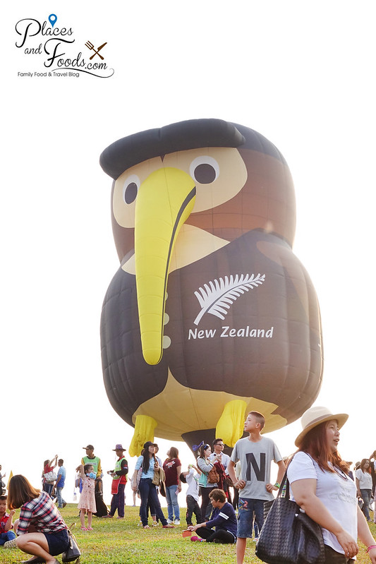 singha park international hot air balloon new zealand balloon