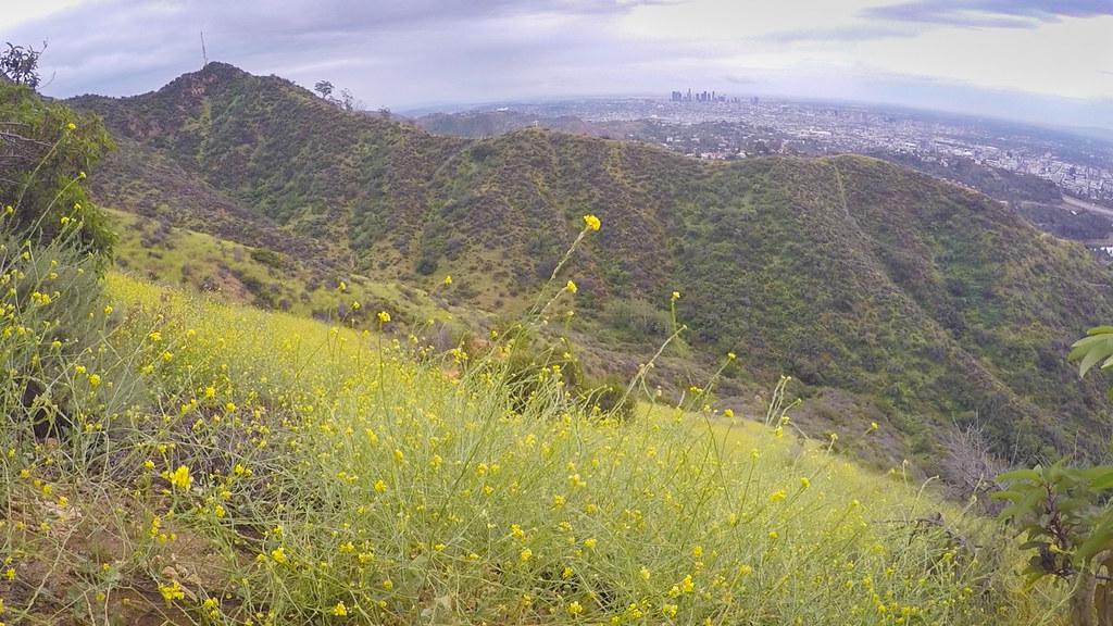 Los Angeles Microadventure