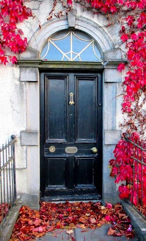Dublin16,greendublin2, green, vihreä, nummi, heath, dublin, irlanti, ireland, matkat, matkustus, travel, travelling, ovi, door,