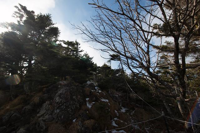 20141123-大峰山-0225.jpg