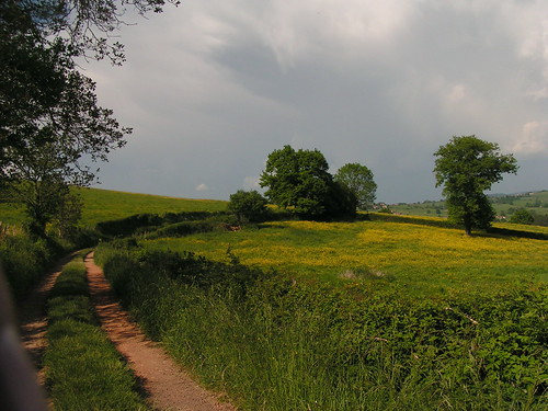 20080511 20930 0901 Jakobus Weg Wiese Bäume Wolken