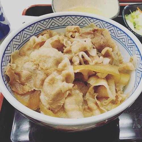 吉野家の豚丼食べた。