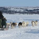 Kuujjuaq - Dry Bay in the winter