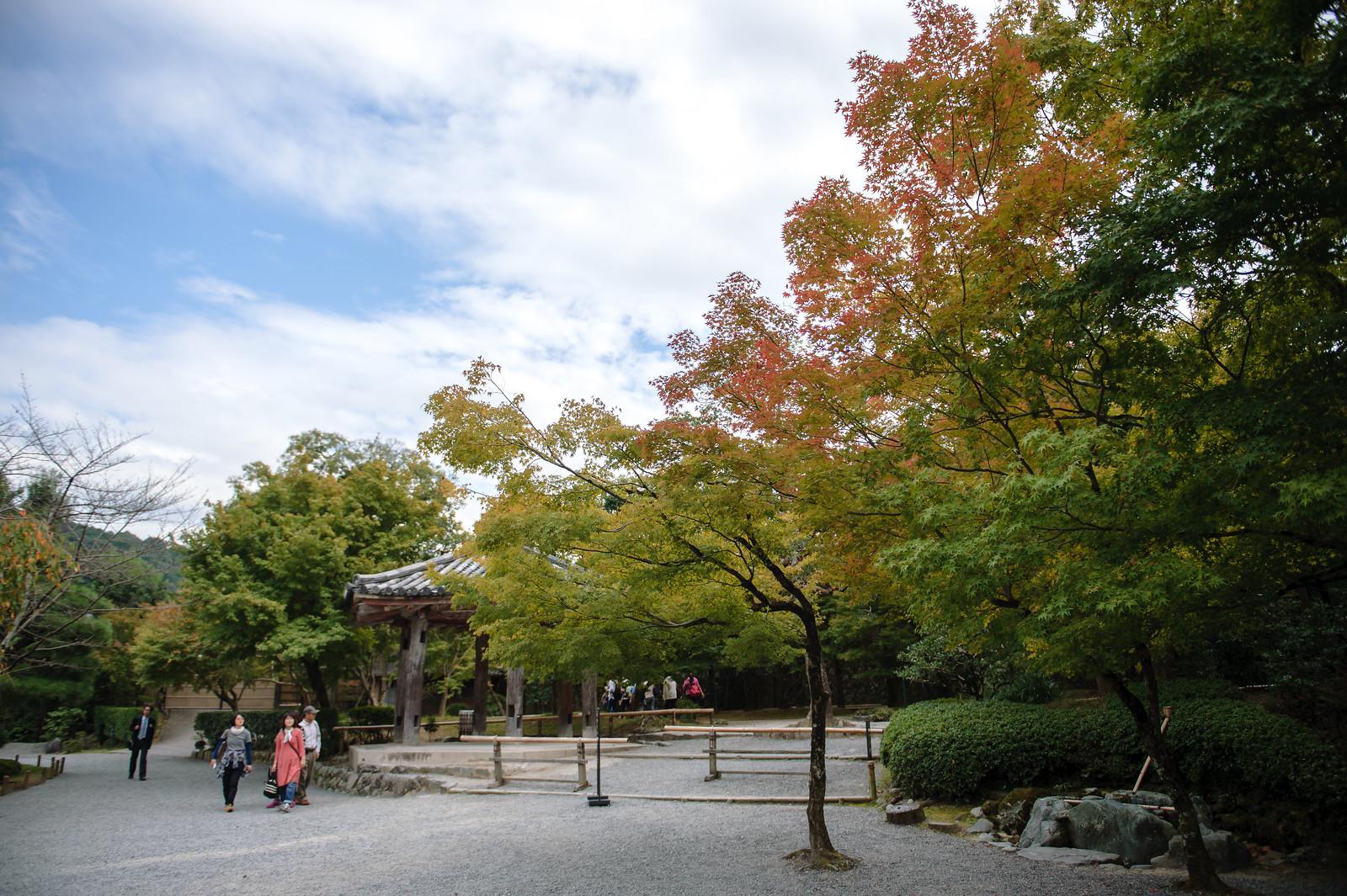 2015VQ@Kyoto-253