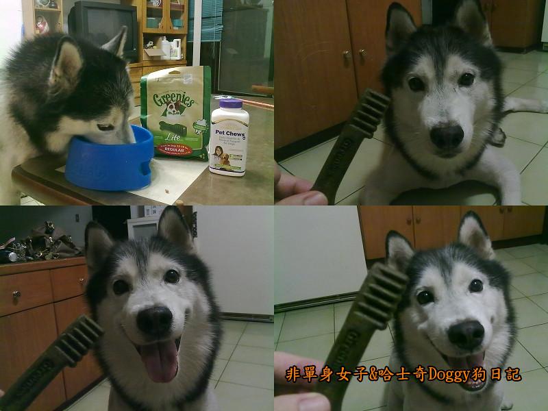 哈士奇Doggy愛狗零食21