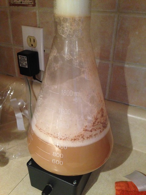 building up the yeast