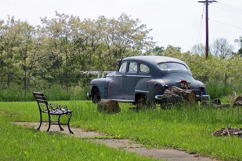 Dodge among detritus