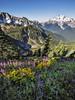 Galcier Peak Wilderness