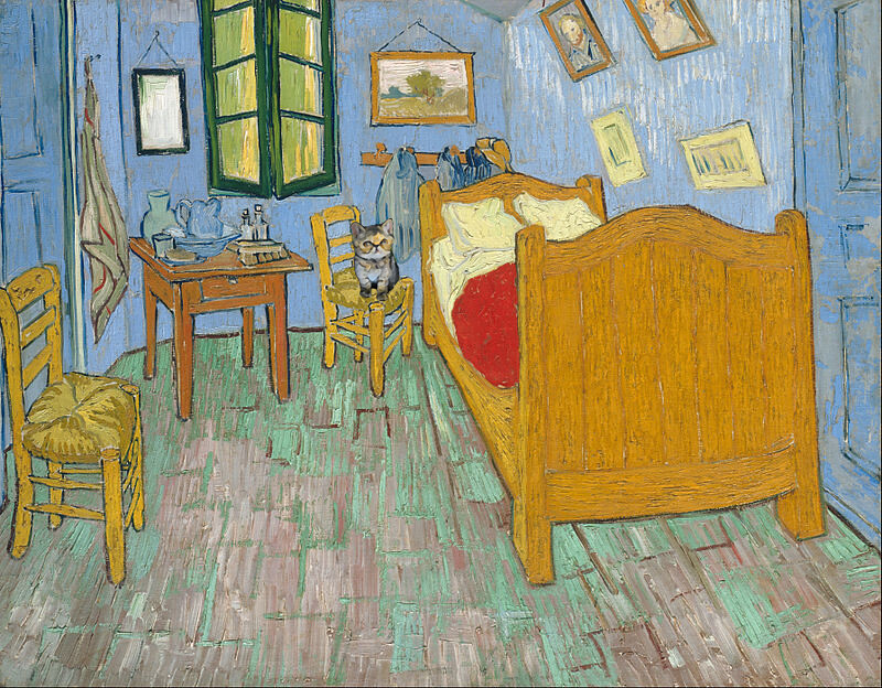 Van Gogh Room in Arlse and a cat
