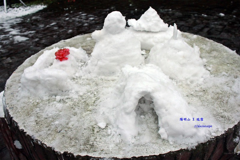 2016-台北陽明山-瑞雪-難得一見的雪白山景-17度C隨拍 (109)