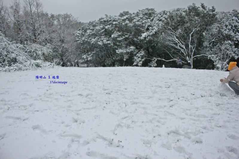 2016-台北陽明山-瑞雪-難得一見的雪白山景-17度C隨拍 (61)