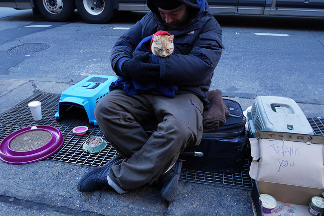 Man and cat, 6th Avenue