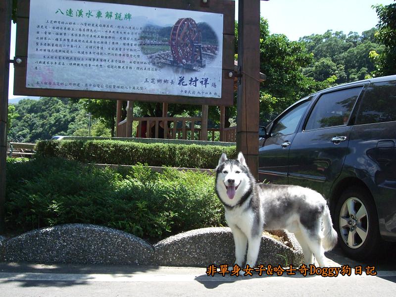 Doggy三芝八連溪15