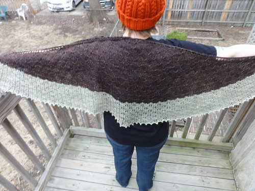 Across the Pond Shawl