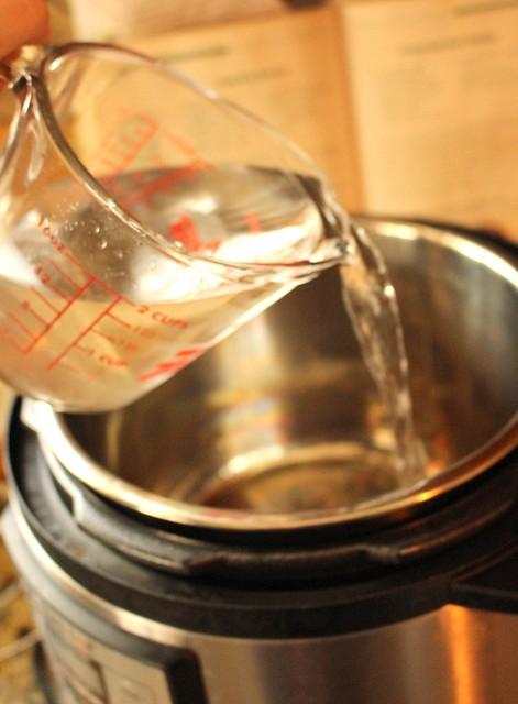 Instant Pot Pressure Cooker Pierogies