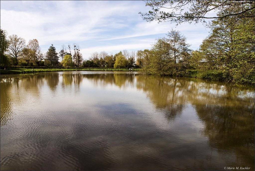 Lac Chaumont  26639098725_4516c1ea31_b