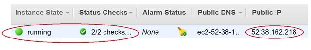 aws-ec2-instance-status-and-public-ip