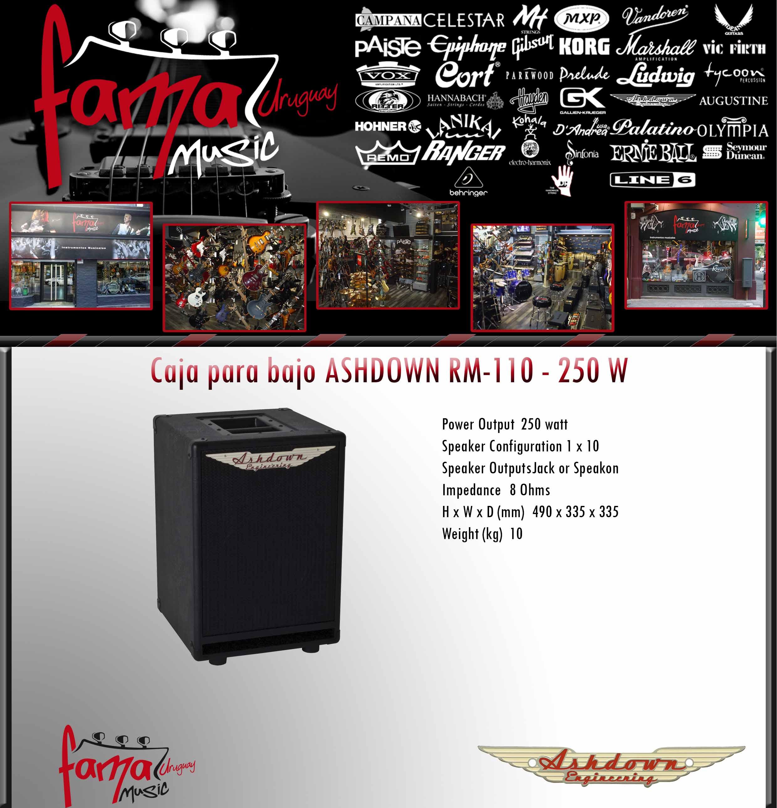 Caja para bajo ASHDOWN RM-110 - 250 W