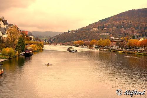 Golden Autumn, Heidelberg Germany
