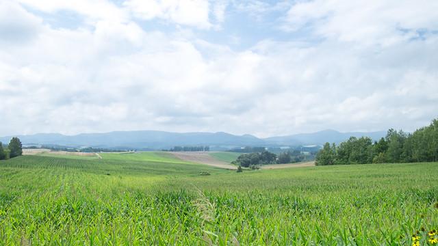 Hokkaido day6 04 Biei