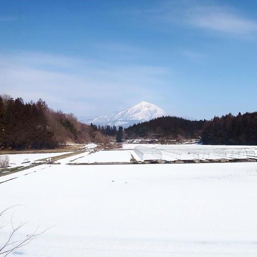 時々こんな、一面雪の景色もあるんですけどね。でも、ほとんど溶けてるなぁ。 #あそこに見えるのが #磐梯山