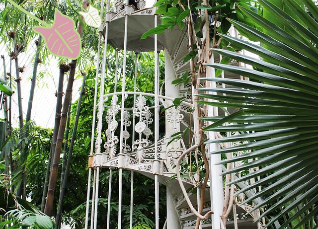 Kew Gardens4