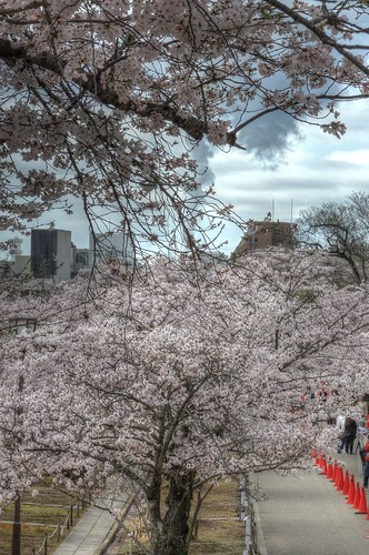 Himeji Castle area on APR 05, 2016 vol03 (7)