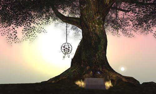 Serenity: In Memorium