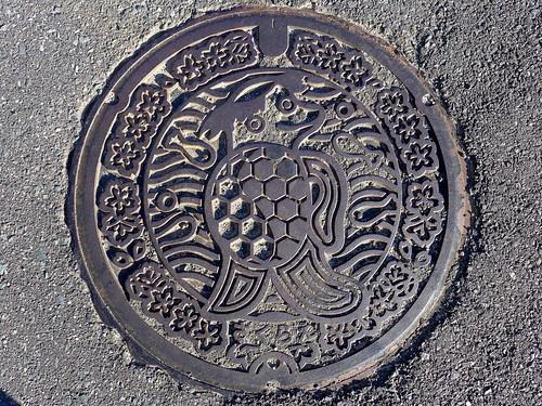Sakurae Shimane, manhole cover (島根県桜江町のマンホール)