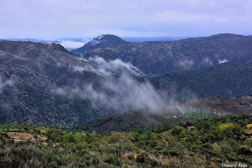 Lluvia y Niebla.