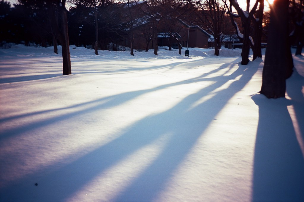 北海道大學 札幌 Sapporo, Japan / Kodak Pro Ektar / Lomo LC-A+ 雪,我第一次看到雪,很冷,很冰,軟綿綿。  好奇雪有多綿,我就把手掌壓入雪堆,但沒多久一陣刺痛,想甩掉手上的雪卻甩不掉。  手掌刺痛著,心裡想念的也刺痛著。  Lomo LC-A+ Kodak Pro Ektar 100 8267-0030 2016-01-31 ~ 2016-02-02 Photo by Toomore