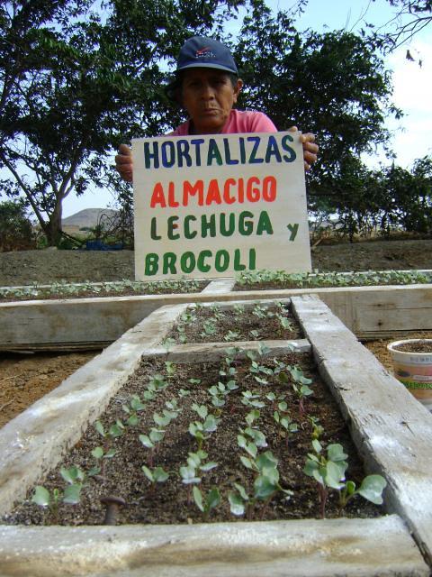 Unidad de Gestión Territorial - Valle Jequetepeque