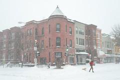 Saturday Snow 5