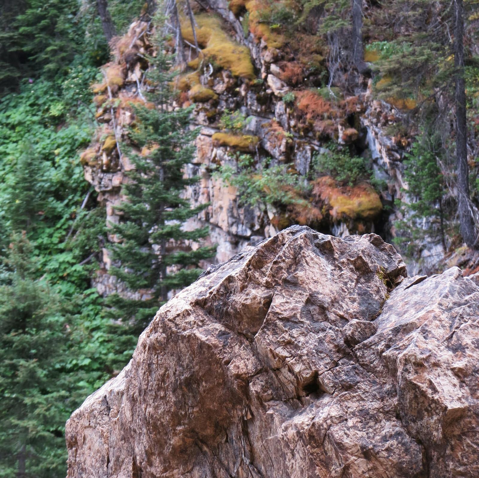 Running Eagle Falls, Blackfeet Glacier, Montana