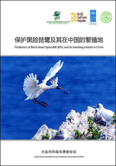 Protection of Black-faced Spoonbill and its breeding habitat in China